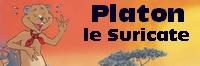 Platon_200x66